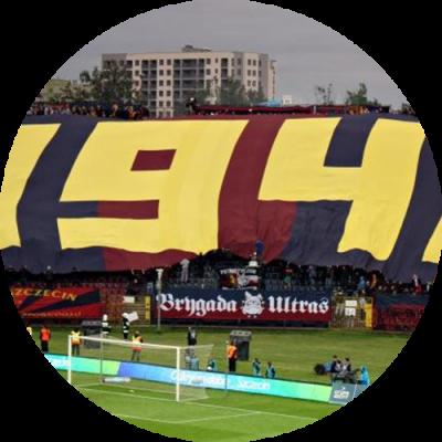 flagi_sektorowe_1